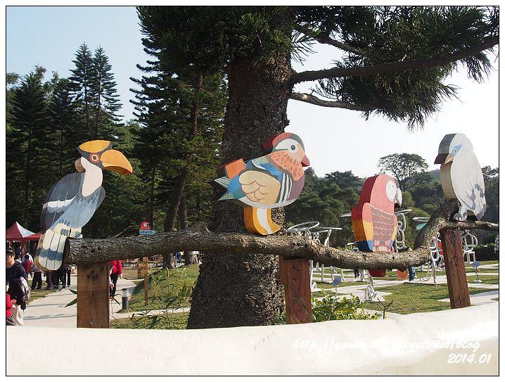 森林鳥花園64