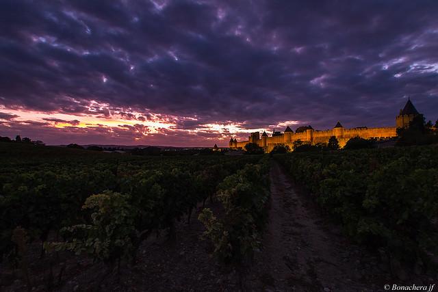 Carcassonne-045