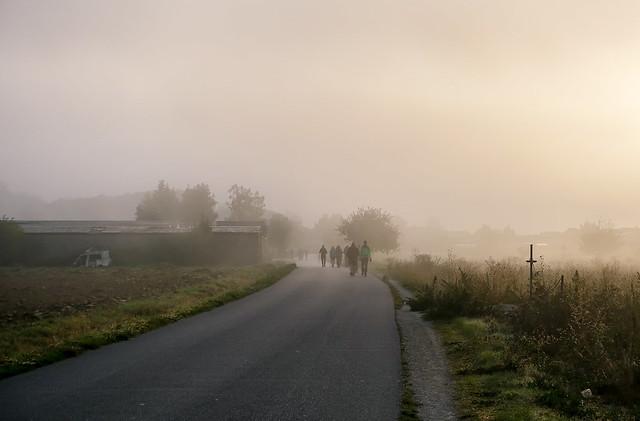 Camino-293