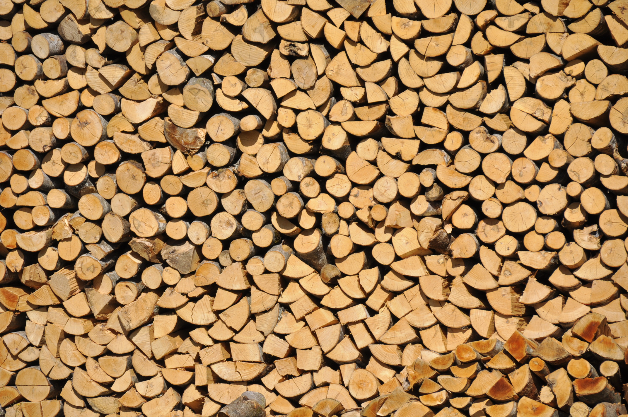 Réserve de bois  Flickr  Photo Sharing! ~ Reserve De Bois