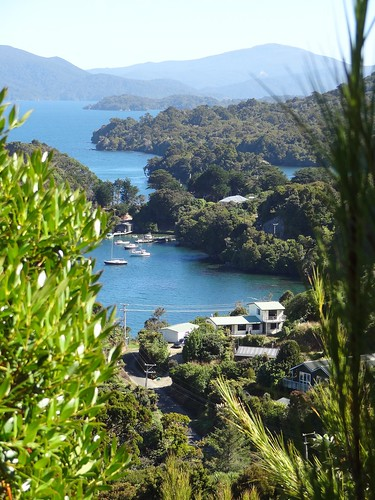 Stewart Island View From Observation Rock