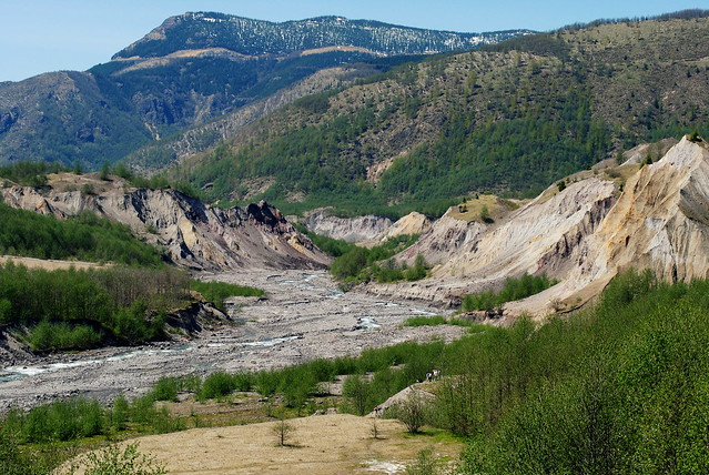 the path cut by the lahar (massive tsunami-like mudflow) that rushed down into the surrounding area when Mt St Helens blew