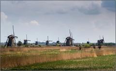 Les Moulins de Kinderdijk (Pays-Bas)