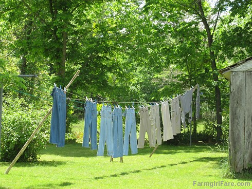 (29-17) The laundry line is in constant use - FarmgirlFare.com