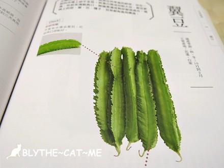 蔬菜百科 (13)