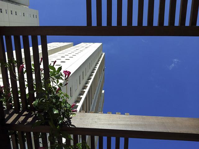 Apartment living above the trellis in Jundiai, SP, Brazil