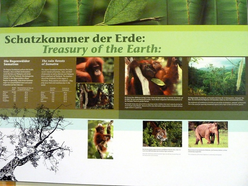 Munich: Hellabrunn Zoo