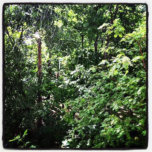 #sun #rain Странно сегодня. Уже второй ливень и яркое солнце;)