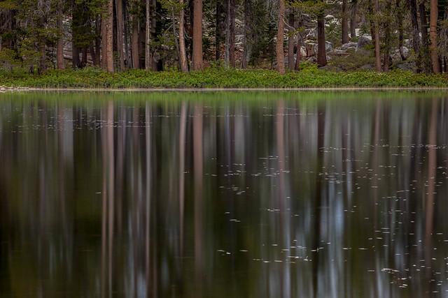 Siesta Lake by Charlotte Gibb