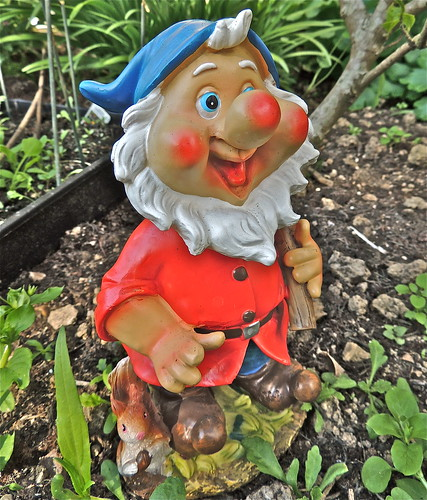 "Meet ""Gnomeo"", My Friendly Garden Helper .......(182/365) by Irene_A_"