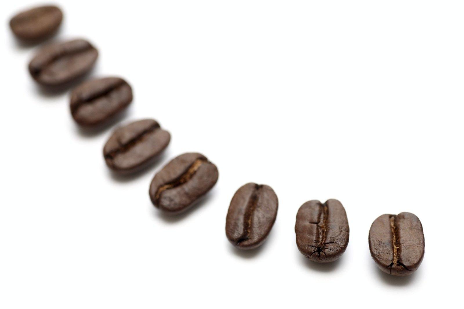 Café 101