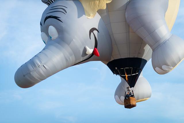 balloon-0584