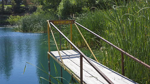 Stay Off Dock by Damian Gadal