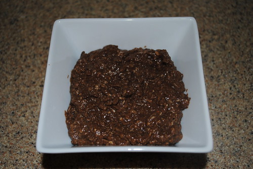 Brownie Batter Oatmeal Pudding (2)