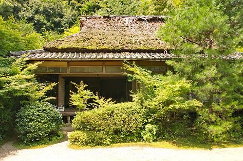 【写真】2013 : 滝口寺/2020-10-21/IMGP1160