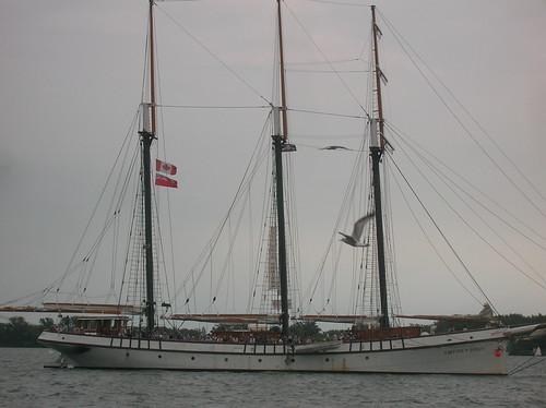 DSCN8115