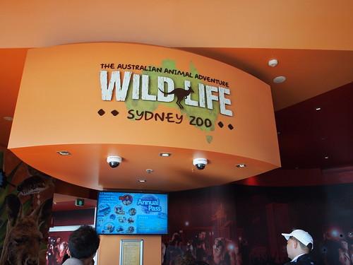 P9146528 WILD LIFE SYDNEY ZOO シドニー動物園
