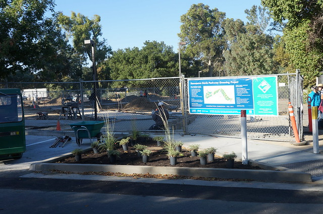 Uc Davis Arboretum Volunteers Work To Install The Landscap