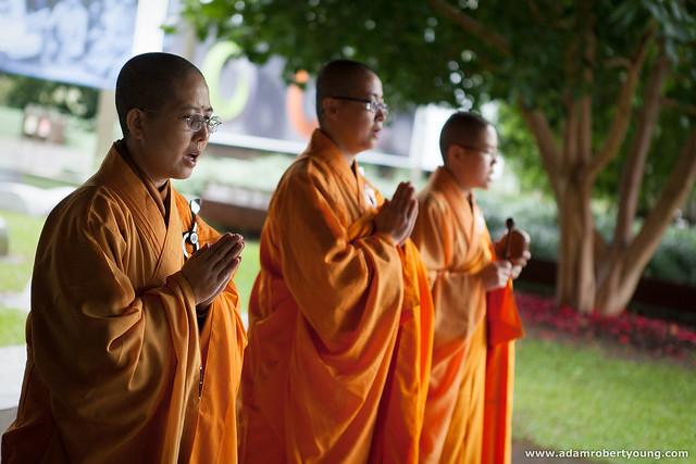 Bodhi Blessing 8