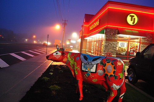 usa newyork art cow fastfood arbys tacojohns lindenhurst josephcerulli