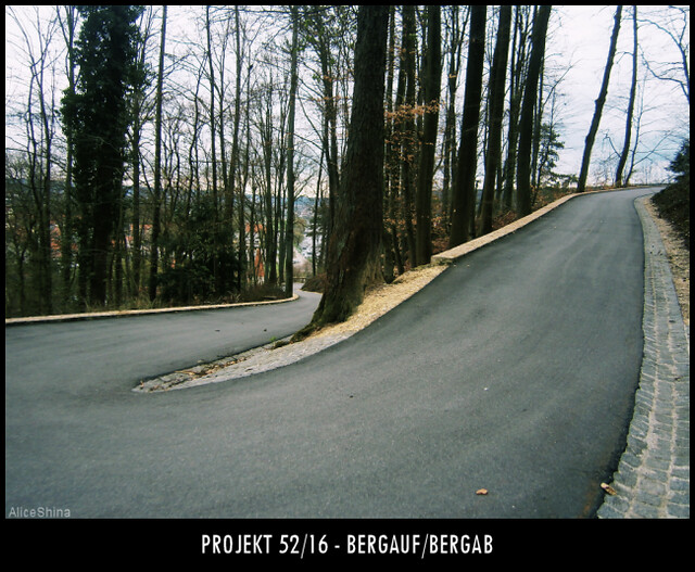 Projekt 52/16 - Bergauf/Bergab