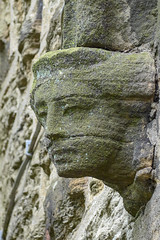 Flockton Face
