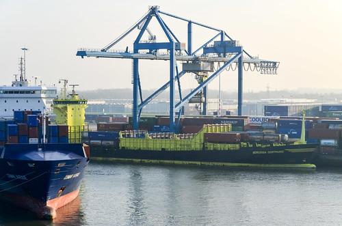 MS Borussia Dormund, the container ship