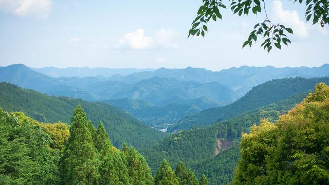 Hongu view