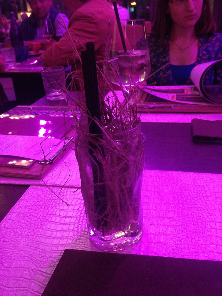 Kräuter-Soda mit Stroh © diekremserin
