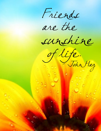"""Friends are the sunshine of life."" John Hays"
