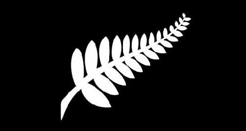 纽西兰Silver Fern签将在4月27日开放