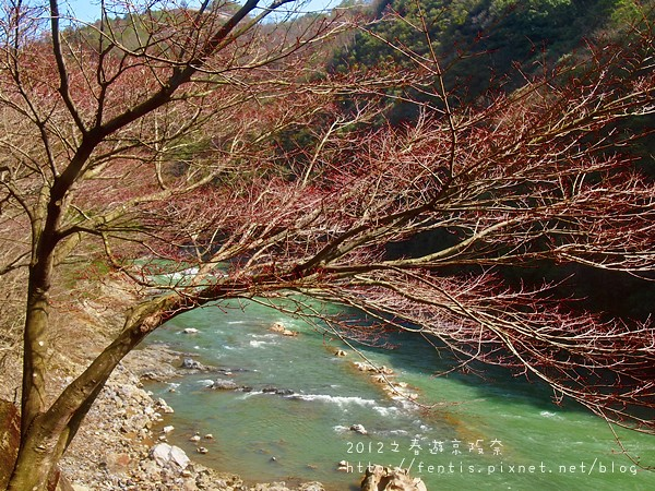 0402嵐山-16