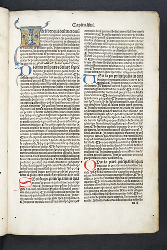 Illuminated initial in Alexander Carpentarius: Destructorium vitiorum