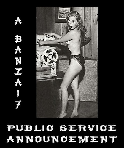 PUBLIC SERVICE by Colonel Flick