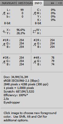 panel-info-advanced