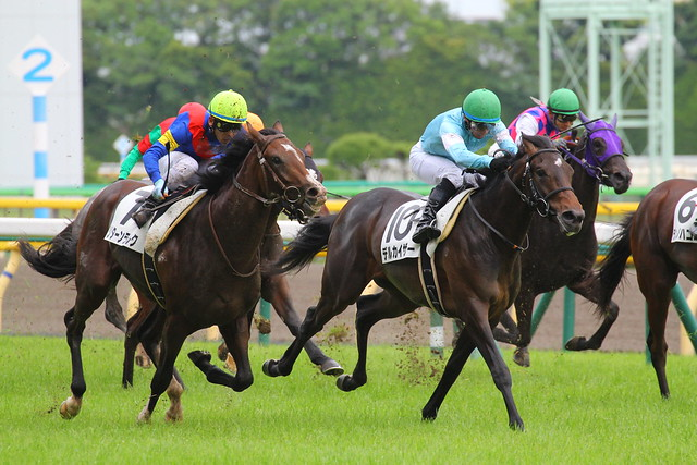 2013/6/19 2歳新馬 リターンラルク&デルカイザー