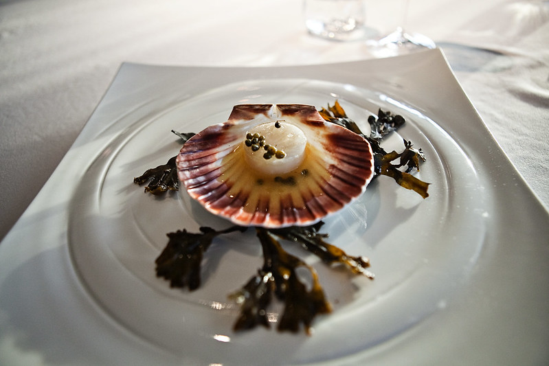 geranium-perfect-scallops-w-elderberries