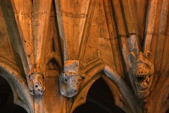 York Minster - June 2013 - Grotesque Carvings - The 7 Deadly Sins