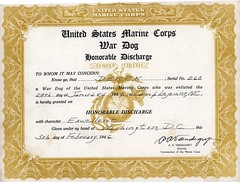 Discharge Certificate, 5 February 1946