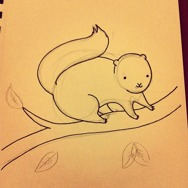 Drawing squirrels tonight. #squirrel #art #illustration #woodland