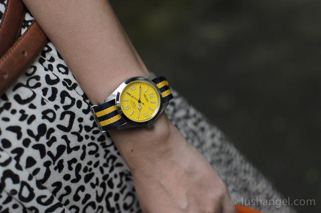 veloci-cruise-watch