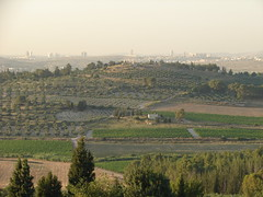 View from Neve Shalom