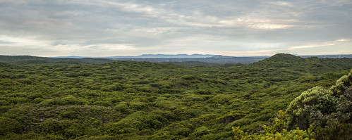 sky panorama mountains green nature clouds photoshop landscape bush scenery sony scenic australia vista albany alpha tamron westernaustralia 2470mm sandpatch a99 slta99 stevekphotography