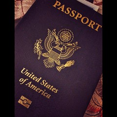 purple(0.0), label(0.0), brand(0.0), pattern(1.0), passport(1.0), identity document(1.0),
