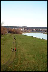 Elbe river - Dresden