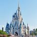 Magic Kingdom 2014