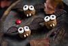 Halloween party sweet treats for kids: chocolate bats