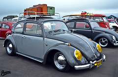 Classic VWs