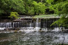Big Falls Duck River 1965