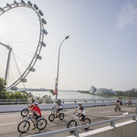 MT_300815_OCBCCycle15_2551